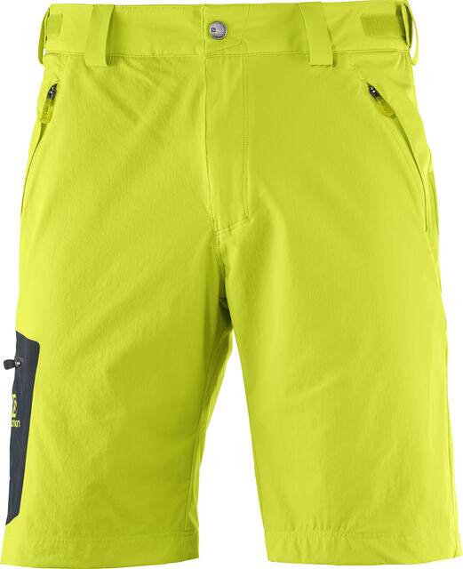 Salomon M's Wayfarer Shorts Regular lime punch
